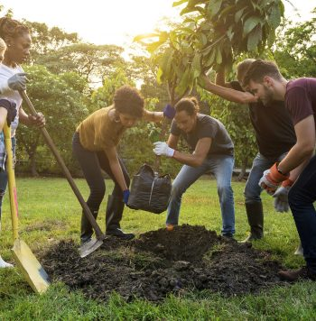 76711724 - group of people plant a tree together outdoors